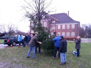 AWG-Weihnachtsbaum 2013
